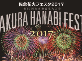 2017年千葉「佐倉花火デート」!関東最大級の花火最新情報
